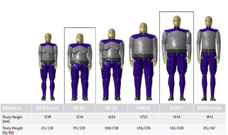DTNA engineering uses a range of digital mannequins developed from a statistical analysis of measurements taken from actual truck drivers.