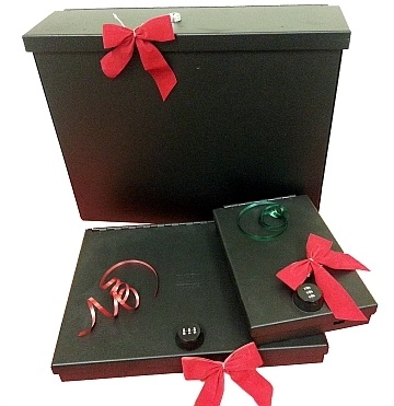 The Laptop Security Lockbox or Tablet Safe is the ideal gift for those individuals in your life who just have to bring their laptop or tablet everywhere they go. (Photo courtesy of Tuffy Security Products)