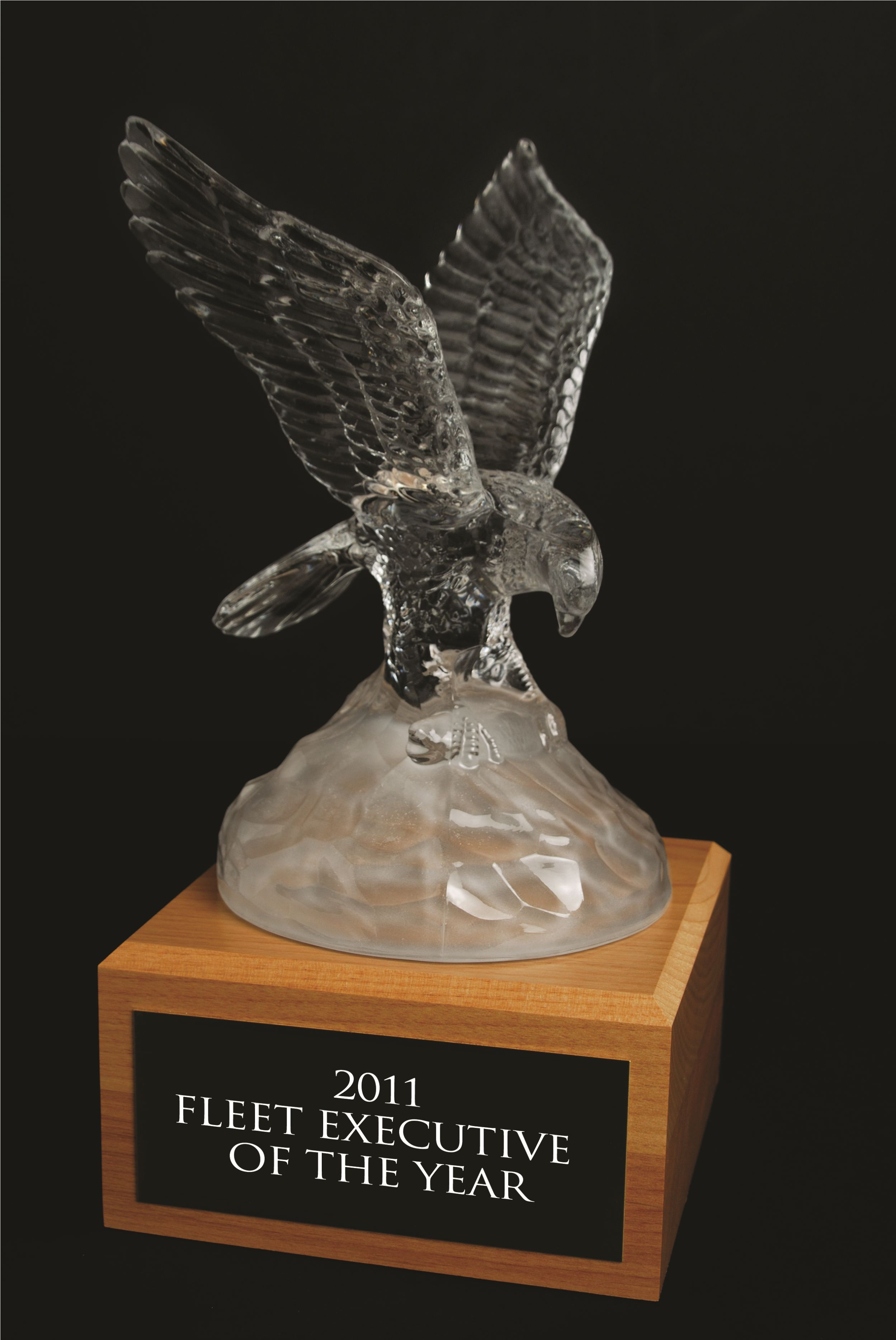 5 Nominated for 2011 Fleet Executive of the Year