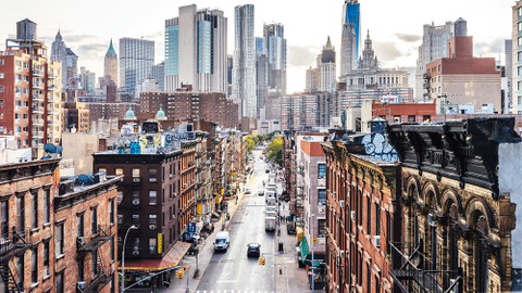 New York City is redefining the role of fleet, with programs that encourage rental for...