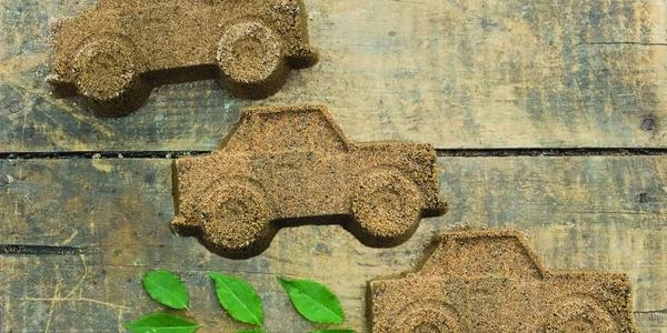 'Green is Good'  for Evergreen Fleet Initiative