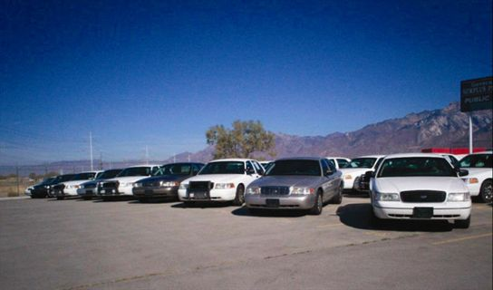 Get the Most from Remarketing Government Fleet Vehicles