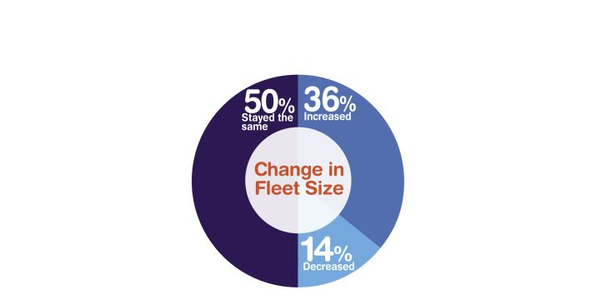 More respondents siad their fleet size increased than those who said it decreased.