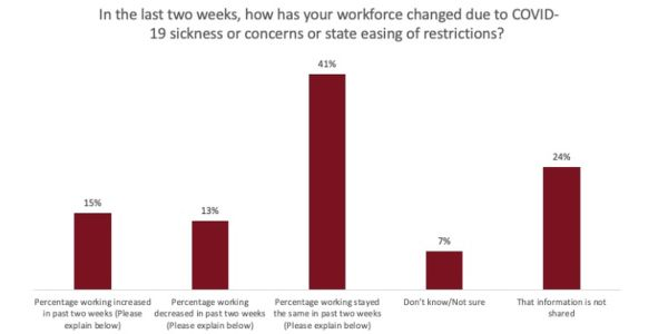 41% of respondents said their workforce has stayed the same in the past two weeks.