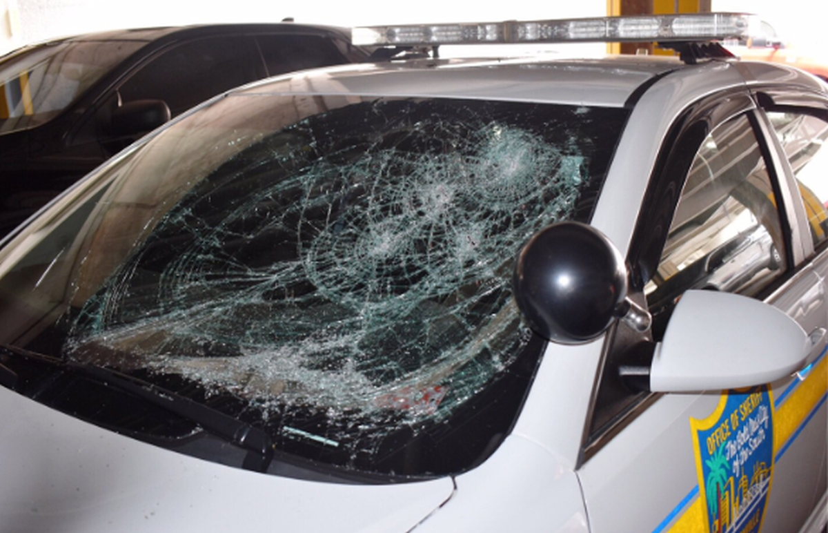 Protests Lead to Fleet Damages