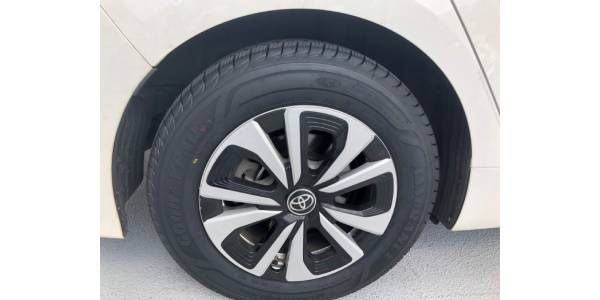NYC Fleet Implements Biotire Project