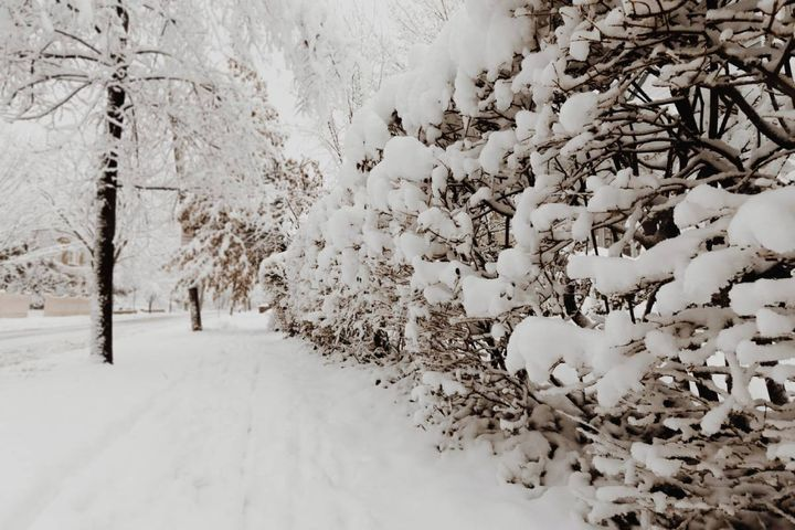 A report by outlet VTDigger states a fear is beginning to materialize among snowplow crews statewide: if a whole crew were to be out sick with COVID-19 when a snowstorm hit, who would clear the roads? - Photo: Unsplash/Kelly Sikkema