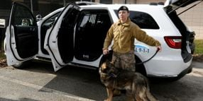 Air Force Gets New, Cheaper Canine-Safe Vehicles