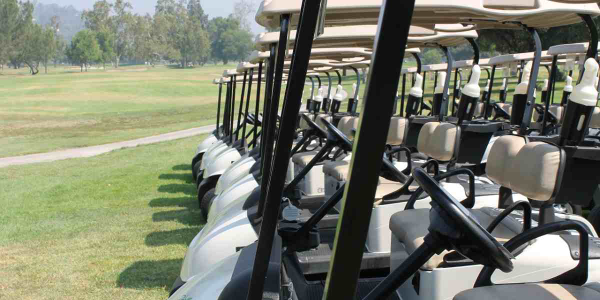 Mich. City to Lease New Golf Carts