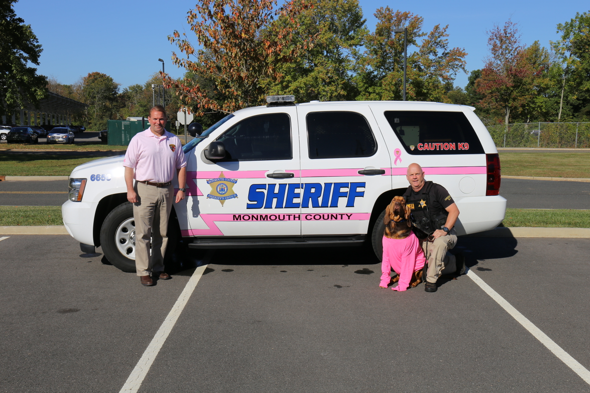 The Monmouth County Sheriff's Office in New Jersey painted pink stripes on one of its patrol...