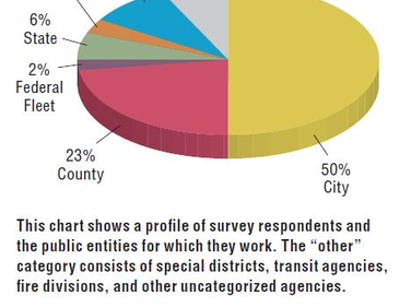 This chart shows a profile of survey respondents and the public entities for which they work....