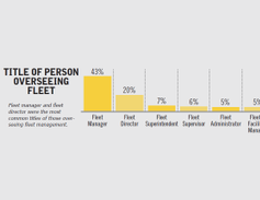 Fleet manager and fleet director were the most common titles of those overseeing fleet management.