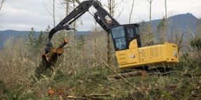 Cat Next Generation 538 Forest Machines Deliver More Production