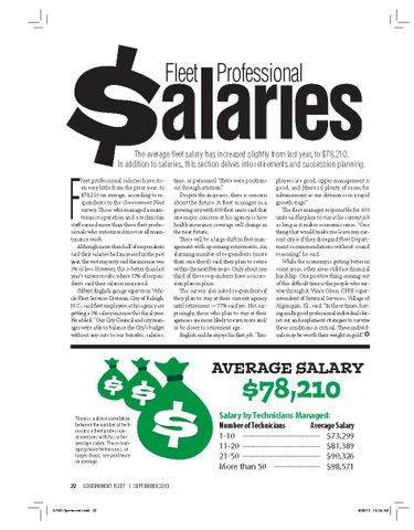 2013 Fleet Professional Salaries
