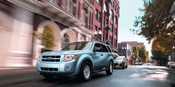 Ford Fleet Previews New Offerings