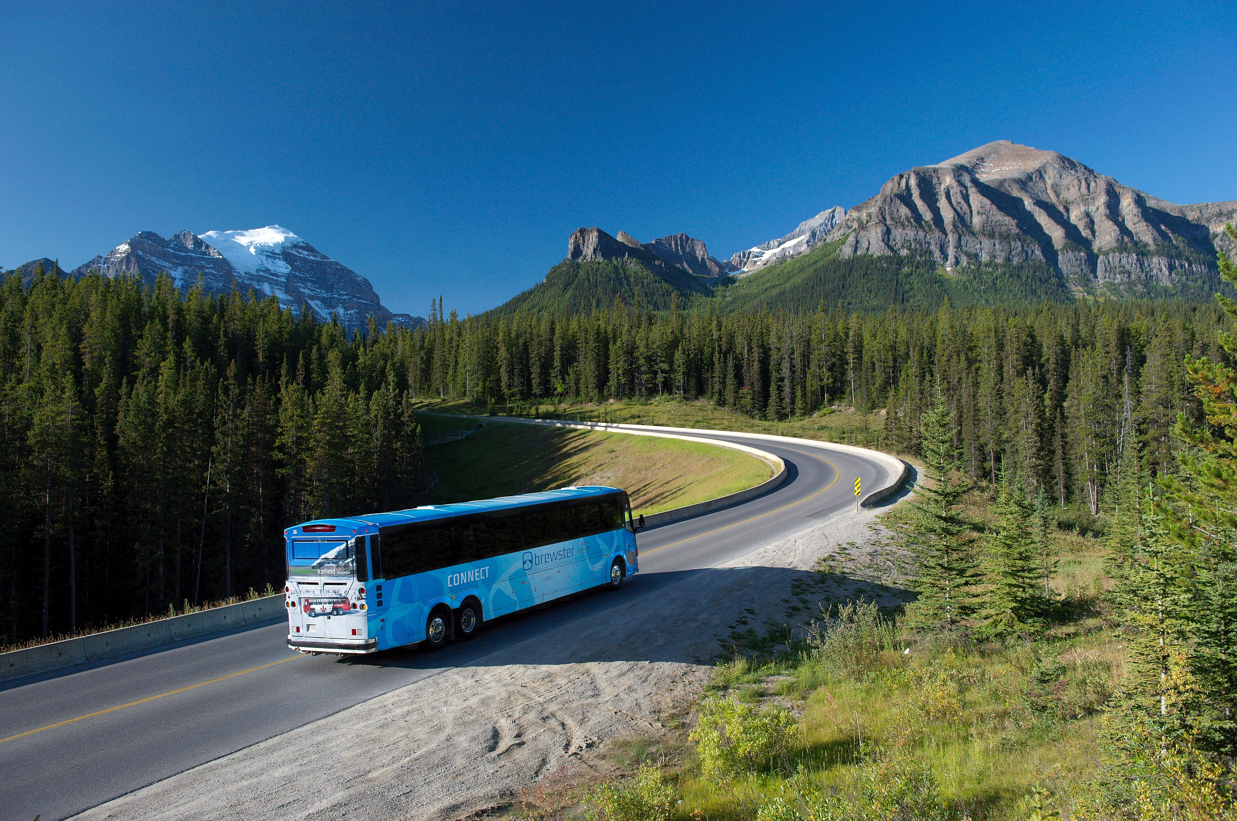 Motorcoach Sales Down 83% in Q2, according to ABA Foundation Report