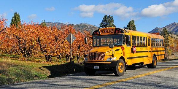 School Reopenings Make Room for New Beginnings
