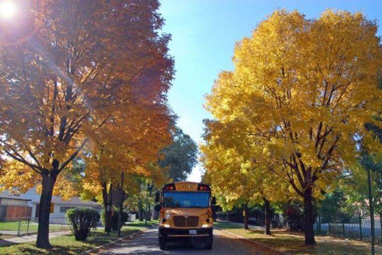 "School Bus Fleet's recent webinar, ""Guidance on Compliance: Regulations and Mitigating Risk as..."