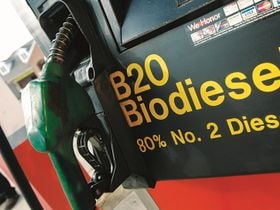 China, Europe Expected to Lead Global Biodiesel Market