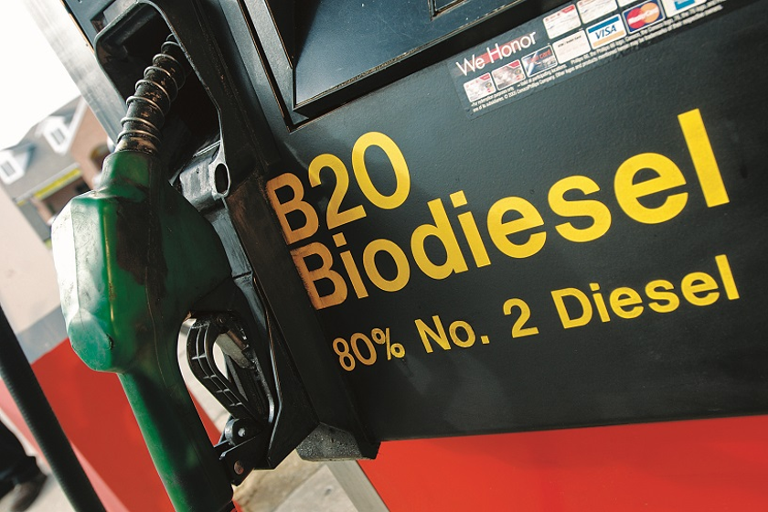 The demand for biodiesel around the globe has witnessed significant growth in the recent past,...