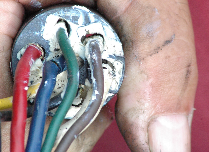 Use dielectric grease anywhere copper wiring comes into contact with air.  -