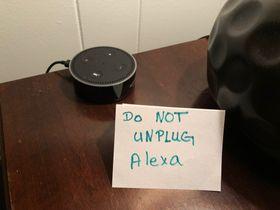 Alexa Everywhere –Even in Big Trucks