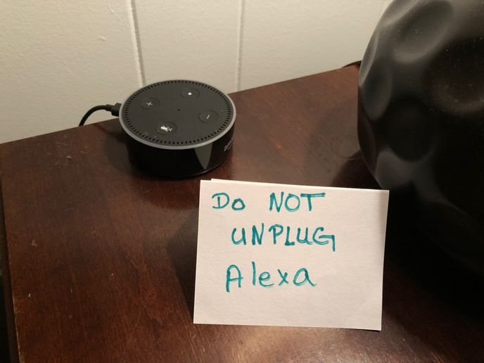 The author's girlfriend has had it up to here with these damn Millennials unplugging her Amazon Echo Dot so they can charge up their phones, vape pens and God knows what else. - Photo: Jack Roberts