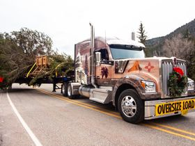 Capitol Christmas Tree Kicks off the Holiday Season for Trucking
