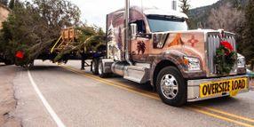 Capitol Christmas Tree Kicks off the Holiday Season for Trucking