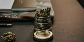 Cannabis E-Learning Course Developed for Truck Drivers