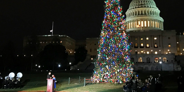 U.S. Speaker of the House Paul Ryan hosted the Capitol Christmas Tree lighting ceremony, a...