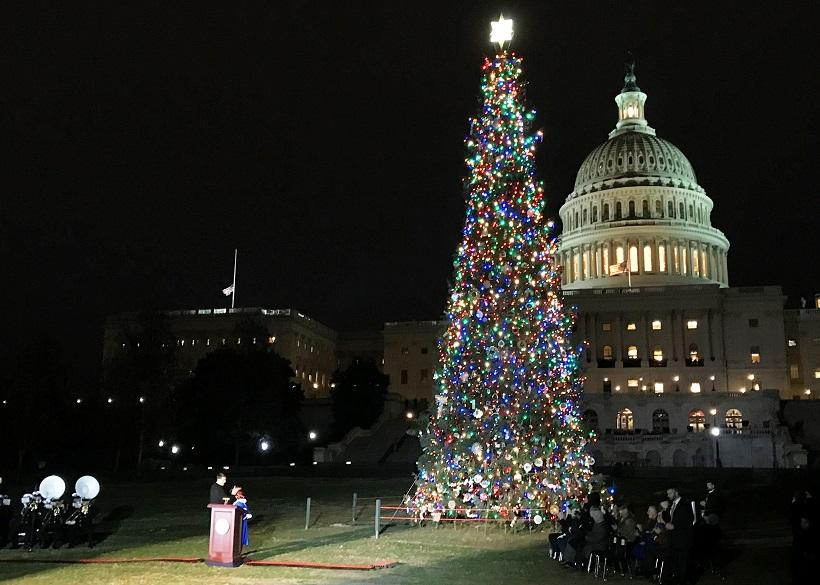 House Speaker Ryan Lights The Capitol Christmas Tree