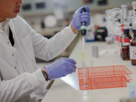 Study: Major Split Between Truck Driver Urinalysis and Hair-Testing for Drugs