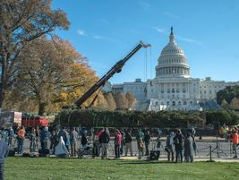 A crowd gathers to view the raising of the this year'sU.S. Capitol Christmas tree.