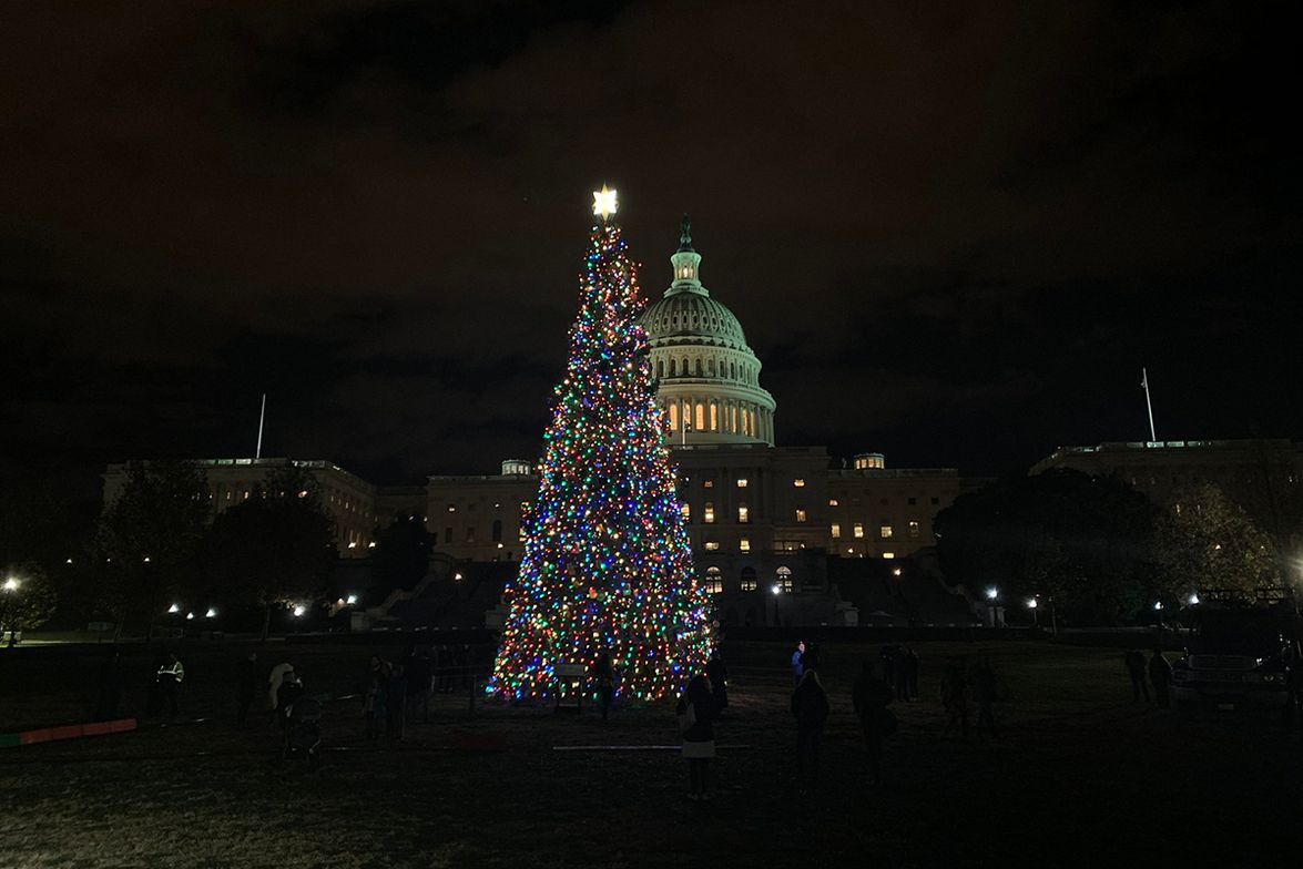 Christmas Tree Makes Journey to Capitol Lighting Ceremony [Photos]