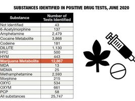 Marijuana by far outpaced other substances identified in positive drug tests reported to the...