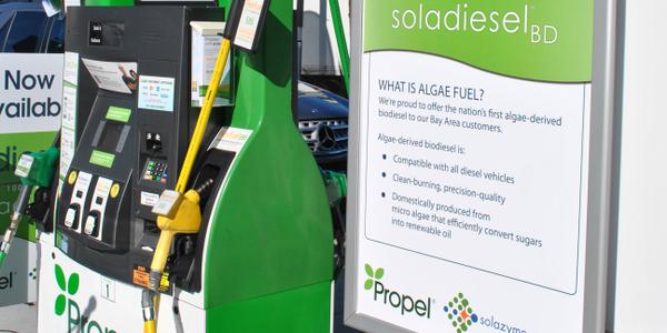 Companies Report Success for Algae Biodiesel Pilot Project