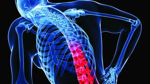 While back pain is the bane of many whose jobs involve a lot of sitting, the misery is...