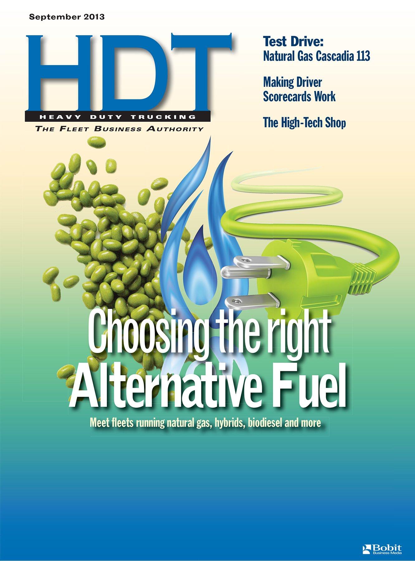 Alternative Fuels: Many Options