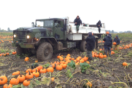 Ex-Military Trucks Find Duties with Civilian Operators