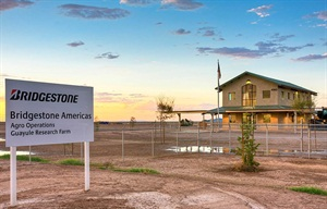Bridgestone Completes Guayule Research Farm