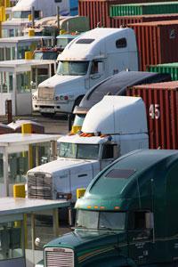 Trucks at the Port of Tacoma
