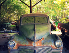 A little TLC would have this old Studebaker back in shape in no time. Photo: Christina Hamner