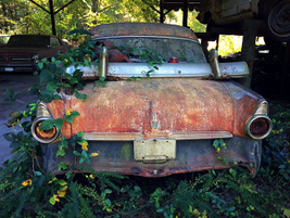 This old Ford lost its bumper. Photo: Christina Hamner