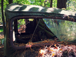 Time, nature and weather slowly eat the old cars and trucks away. Photo: Christina Hamner