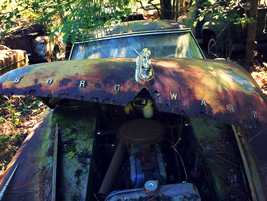 An old Merc up close. Photo: Christina Hamner