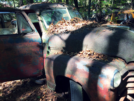 Where did this old truck go when it was shiny and new? Photo: Christina Hamner