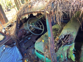 The interior on this old Chevy has seen better days. Photo: Christina Hamner