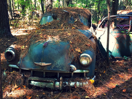An early '50s vintage Chevy. Photo: Christina Hamner