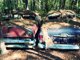 Old rivals at rest. Photo: Christina Hamner